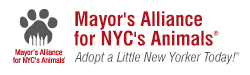 Mayor's        Alliance for NYC's Animals