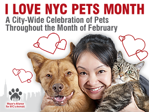 I Love NYC Pets Month: A City-Wide Celebration of Pets Throughout the Month of February