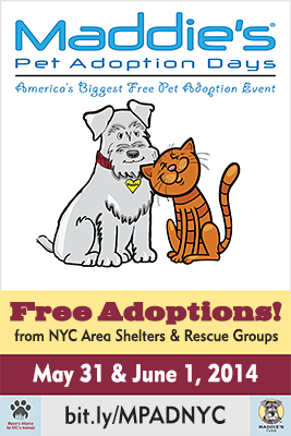 Maddie's Pet Adoption Days - New York City - May 31 & June 1, 2014