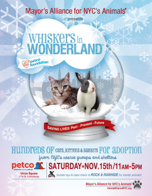Whiskers in Wonderland - November 15, 2014