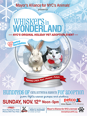 Whiskers in Wonderland - November 12, 2017