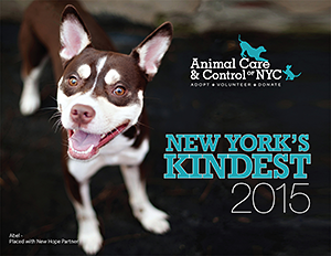Animal Care & Control of NYC (AC&C): New York's Kindest 2015 Calendar