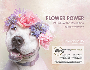 Sean Casey Animal Rescue: Flower Power, Pit Bulls of the Revolution by Sophie Gamand Calendar 2015