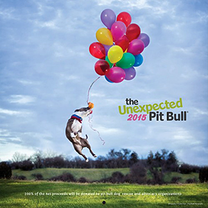 The Unexpected Pit Bull: 2014 Calendar