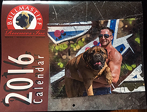 Bullmastiff Rescuers, Inc.: Beefcakes and Bullmastiffs 2016 Calendar
