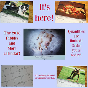 Pibbles & More Animal Rescue: 2016 Calendar