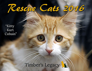 Timber's Legacy: Rescue Cats 2016 Calendar