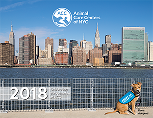 Animal Care Centers of NYC (ACC): 2018 Calendar