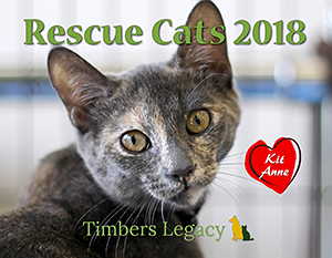 Timber's Legacy: Rescue Cats 2018