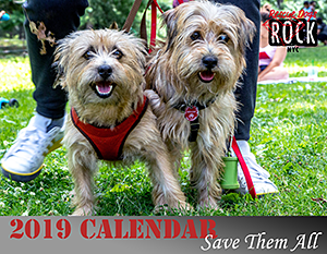 Rescue Dogs Rock NYC: 2019 Calendar