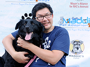 3,098 pet adoptions happened in a single weekend during Maddie's Pet Adoption Days in NYC on June 1 & 2, 2013. (Photo by Dana Edelson)