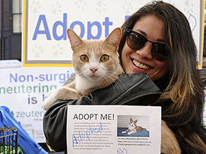 Close to 5,500 pets were adopted in a single weekend during Maddie's Pet Adoption Days in NYC on May 31 & June 1, 2014. (Photo by Dana Edelson)