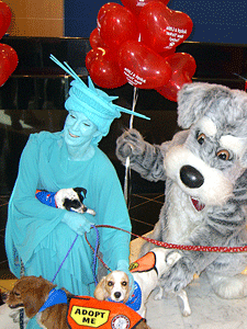 Lady Liberty and Maddie, the Maddie's Fund mascot, launched I Love NYC Pets Month at Commerce Bank in February along with some dogs available for adoption.