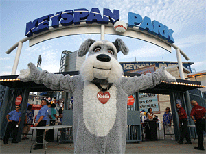 In August, the Mayor's Alliance for NYC's Animals sponsored the annual Bark in the Park pet adoption and microchipping event at the Brooklyn Cyclones' Keyspan Park in Coney Island. (Photo by Rick Edwards)