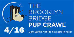 The Brooklyn Bridge Pup Crawl - April 16, 2011