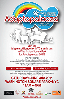 Adoptapalooza - June 4, 2011 - Washington Square Park