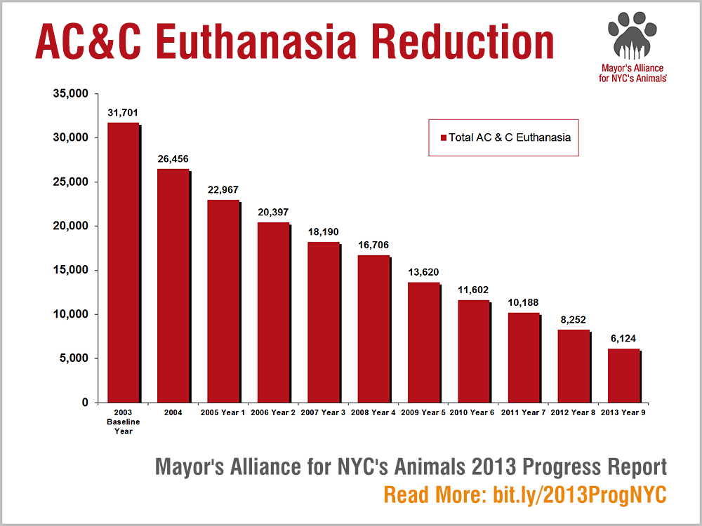 AC&C Euthanasia Reduction