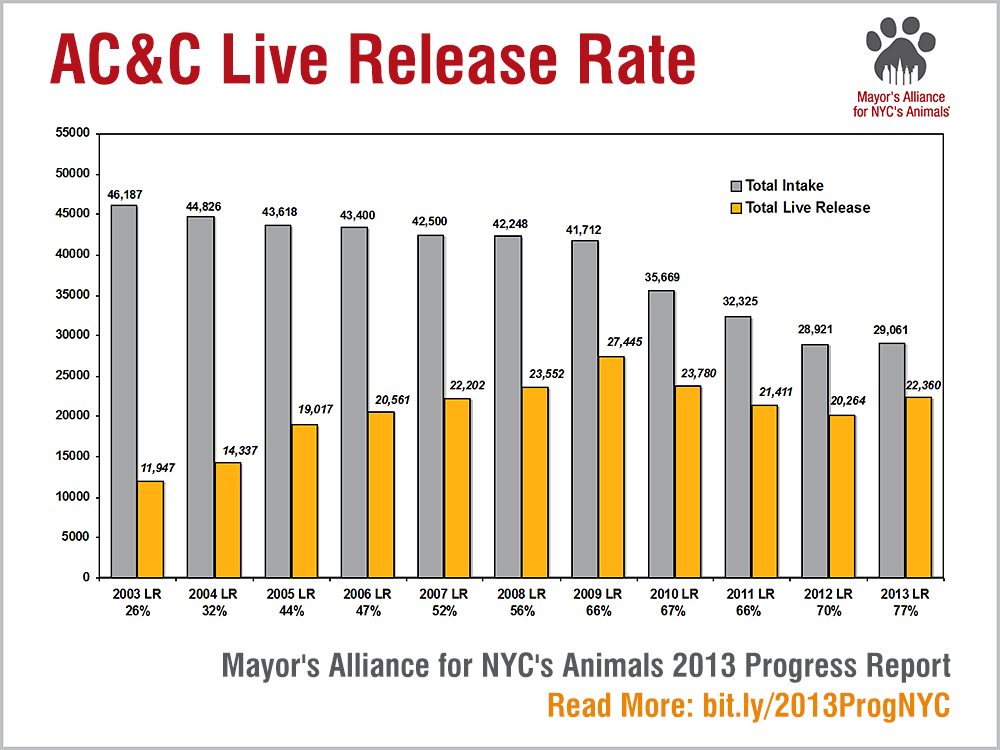 AC&C Live Release Rate