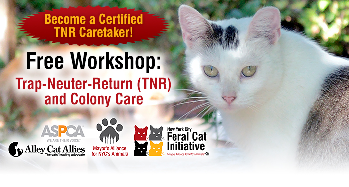 Free Workshop: Trap-Neuter-Return (TNR) and Colony Care