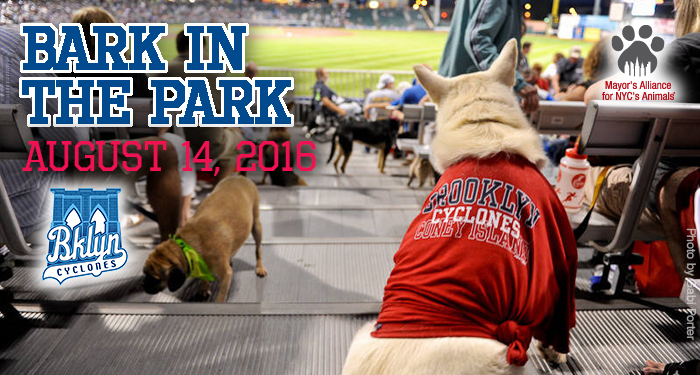 Bark in the Park - August 14, 2016