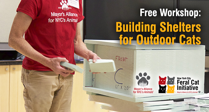 Free Workshop: Building Shelters for Outdoor Cats