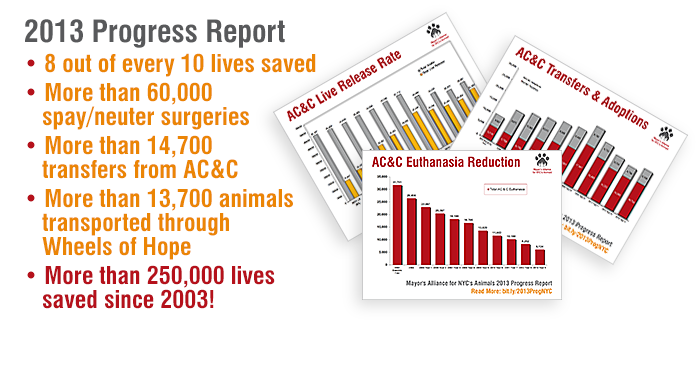 Mayor's Alliance for NYC's Animals 2013 Progress Report