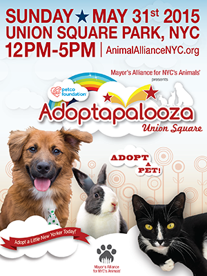 Adoptapalooza - Sunday, May 31, 2015