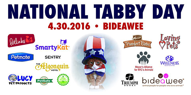 National Tabby Day - April 30, 2016