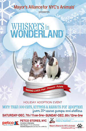 Whiskers in Wonderland - December 7 & 8, 2013