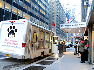 The Mayor's Alliance adoption van will be parked at the POP-UP Adoption Shop with more animals for adoption on Wednesday evenings during the weekly wine reception. (Photo by Dana Humphrey, Whitegate PR)