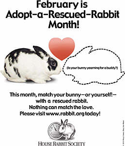 Adopt-a-Rescued-Rabbit Month