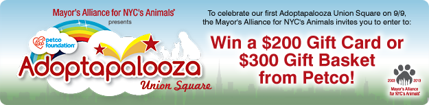 Enter to Win a $200 Adopatapalooza Gift Card or $300 Gift Basket from Petco!