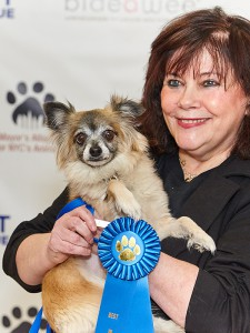 "Penny Lou, an 8-year-old long-haired Chihuahua mix, won the ""Best Loyal Friend"" award at the ""Best in Rescue"" event on February 10, 2016. She is available for adoption from Bideawee. (Photo by Marshal Boprey)"