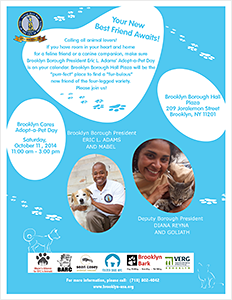 Brooklyn Cares Adopt-a-Pet Day - Saturday, October 11, 2014