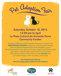 Fabulous Fall Felines Pet Adoption Fair - Saturday, October 18, 2014