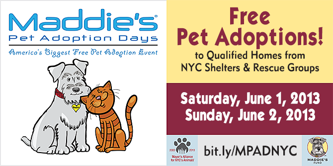 Maddie's Pet Adoption Days - New York City - June 1 & 2, 2013