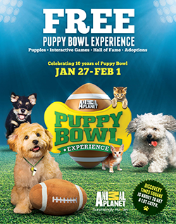 Puppy Bowl Experience - January 27-February 1, 2014