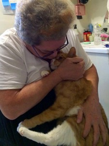 Thanks to the Alliance's Helping Pets and People in Crisis program, Petra Sanchez's beloved cats went to temporary homes until Petra got the in-hospital care she needed and was able to return home. (Photo by Jenny Coffey)