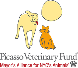 Picasso Veterinary Fund of the Mayor's Alliance for NYC's Animals
