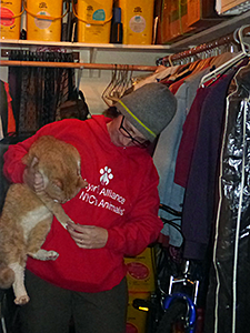 Jenny Coffey from the Mayor's Alliance for NYC's Animals finally found Paris hiding in a closet on Friday, March 14. (Photo by Debbie Fierro)