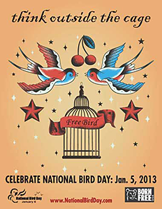 National Bird Day - January 5, 2013