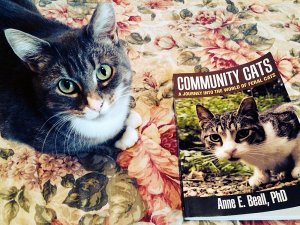 Formerly stray and found living in a community cat colony, foster cat Moo Shu gives this book two paws up! (Photo by Evon Handras)