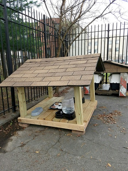 NYPD Officer Greg Paratore built a feeding station and new winter shelters for the cats and placed them discreetly in a corner of the parking lot...just in time for the cold weather! (Photo by Greg Paratore)