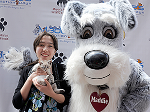 The Mayor's Alliance for NYC's Animals coordinated 90 area shelters and rescue groups to offer free pet adoptions during this year's Maddie's Pet Adoption Days in NYC. (Photo by Dana Edelson)