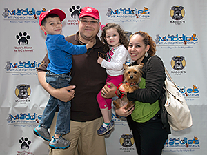 Almost 5,500 dogs, cats, puppies, and kittens were placed in new homes in the New York City area during Maddie's Pet Adoption Days this year. (Photo by Shannon McLaughlin)