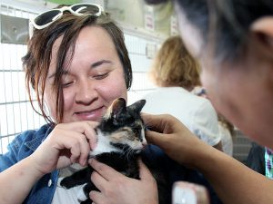 Potential adopters had the opportunity to meet pets from more than 30 animal shelters and rescue groups in one place at Adoptapalooza in Union Square on May 21, 2017. (Photo by Rick Edwards)