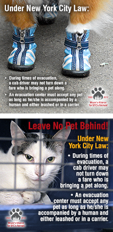 Under New York City Law
