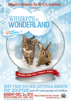 Whiskers in Wonderland - Sunday, December 2, 2012