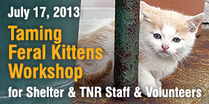 Taming Feral Kittens Workshop - July 17, 2013