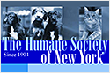 The Humane Society of New York
